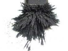 Magnet and Filings