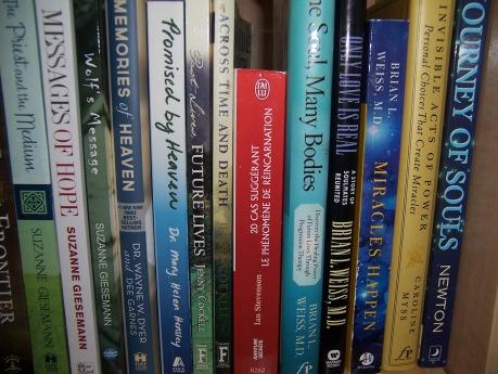 many-lives-bookshelf